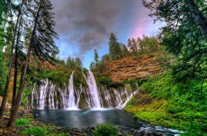 Обои США Водопады Калифорния Деревья Burney Falls Природа фото