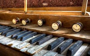 Обои Крупным планом Pipe organ Музыка фото