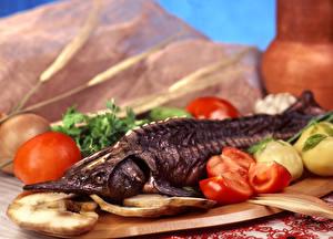 Фото Морепродукты Рыба Овощи Томаты Пища