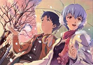 Обои Neon Genesis Evangelion Парни umbreon ayanami rei ikari shinji Девушки