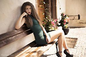 Фотографии Сидящие Скамья Шатенки Ноги девушка