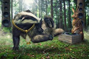 Обои Зайцы Леса Украшения Цепь DJ European badger breakdance Животные Юмор