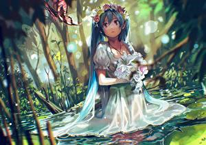 Картинка Hatsune Miku Вокалоид Волос Платья Аниме
