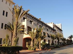 Фотографии Здания Марокко Улиц Пальмы Agadir город