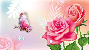 Обои Бабочки Розы Рисованные Насекомое животное Цветы