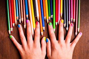 Обои Крупным планом Пальцы Руки Маникюр Карандаши Разноцветные rainbow colors