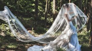 Обои Азиаты Невеста Платья молодая женщина