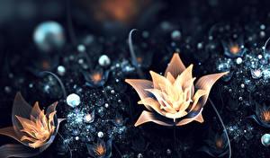 Фотография Абстракционизм Цветы 3D_Графика