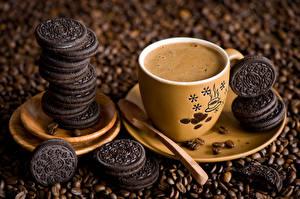 Фото Напитки Кофе Печенье Чашка Блюдце Зерна