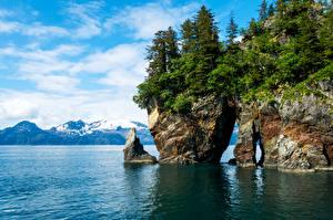 Картинки США Реки Парки Скале Ели Kenai Fjords National Park Природа