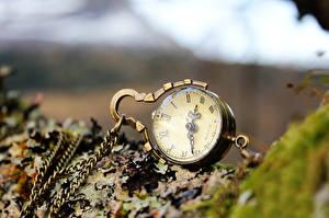 Картинки Карманные часы Вблизи Цепи