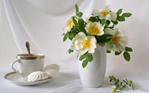 Фотография Сладости Букет Натюрморт Чашке Ваза Цветы Еда