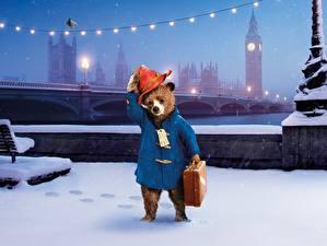 Фотография Медведь Англия Лондоне Снег Шляпа Paddington 2014 Фильмы