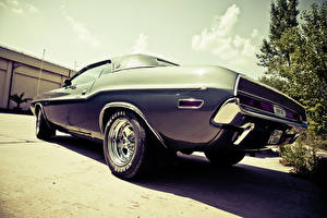 Фотография Додж Старинные markus spiske muscle car oldtimer Dodge Challenger машины