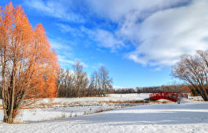 Обои Мосты Зима Парки Небо Снег Природа