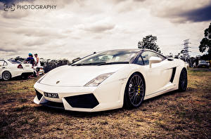 Фото Ламборгини Белый Люксовые gallardo lp560-4 Машины