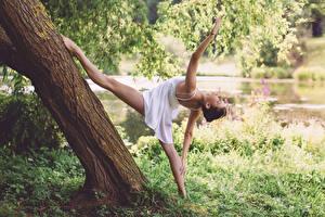Фотография Гимнастика Ноги Ствол дерева Трава Шпагат Растяжка упражнение Девушки