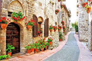 Фотографии Италия Здания Бегония Улица Города
