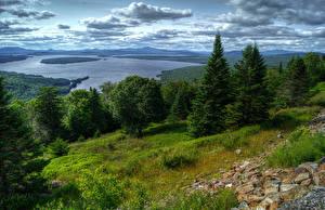 Картинки Америка Озеро Пейзаж Облачно Деревьев Ели Трава HDRI Lake Mooselookmaguntic Природа