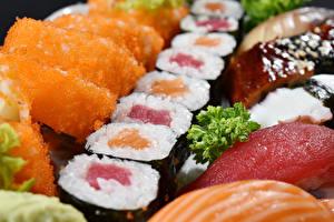 Фотография Морепродукты Суси Продукты питания Еда
