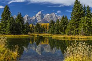 Обои Штаты Парк Горы Лес Озеро Осенние Пейзаж Grand Teton Wyoming Природа