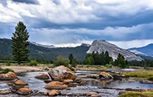 Фотографии Пейзаж США Парки Горы Камень Небо Йосемити Ель Ручеек Природа