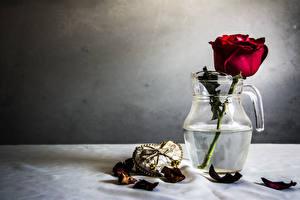 Картинки Розы Лепестки Красный Кувшин Цветы