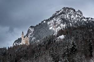 Картинка Германия Замки Горы Нойшванштайн Леса Бавария Природа