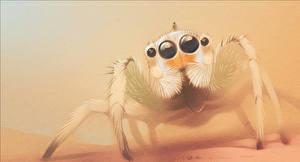 Фотография Пауки Картина Насекомое Рисованные Глаза Пауки-скакуны Фэнтези Животные