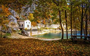 Картинки Осень Озеро Парки Скамейка Деревья Природа