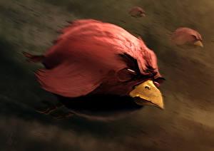 Обои Angry Birds Мультики