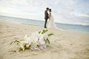 Фотографии Букеты Любовники Свадьба Пляж Песок Цветы