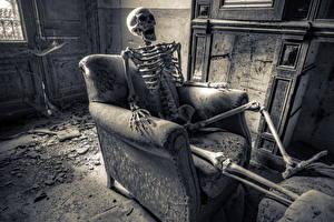 Обои Скелет Кресло HDR Старый фото