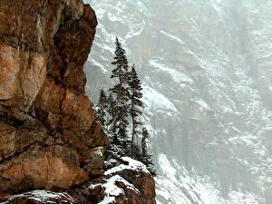 Картинки США Гора Парки Скала Colorado Rocky Mountain National Park Природа