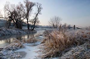 Фотография Реки Мост Зимние Снег Трава Природа