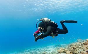 Фотография Дайвинг Подводный мир diving equipment recreational activity