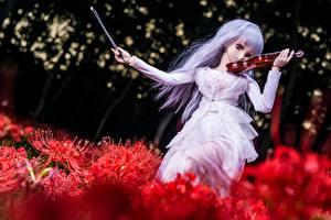 Фотографии Скрипки Кукла Платья молодые женщины