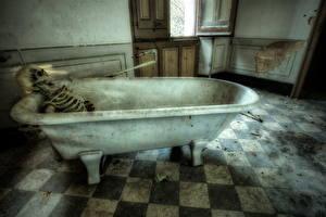 Картинки Ванная Скелет