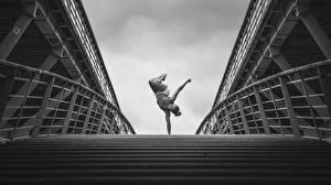 Обои Гимнастика Мосты Emilie Caillon Девушки фото