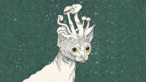 Фотографии Кошка Грибы природа Рисованные psychedelic животное