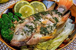Картинки Морепродукты Рыба Лимоны Укроп Еда