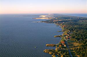 Фотография Пейзаж Литва Берег Здания Леса Сверху Nida Природа