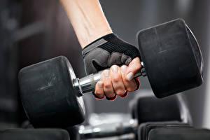 Картинки Фитнес Гантели Руки weight gloves Спорт