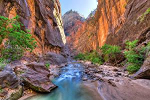 Фотографии Штаты Парки Река Зайон национальнай парк Скале Utah