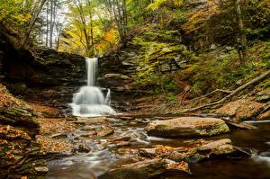 Фотографии Водопады Парк Америка Пенсильвания Sheldon Reynolds Falls Ricketts Glen State Park Природа