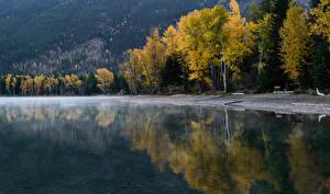Фотографии Озеро Осень Побережье Природа