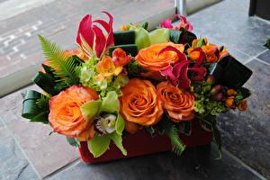 Фотография Букеты Розы Фрезия Орхидея Морозник