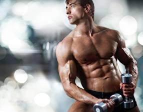 Картинка Мужчины Фитнес Бодибилдинг Гантели Мышцы Красивые Спорт