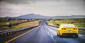 Картинка Шевроле Дороги Желтые Вид сзади Camaro Автомобили