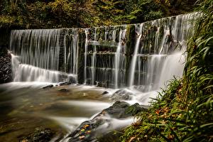 Обои Англия Водопады Stock Ghyll Falls, Lake District, Ambleside Природа фото
